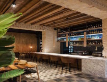 Perro-Viejo-by-Donaire-Arquitectos-Yellowtrace-05